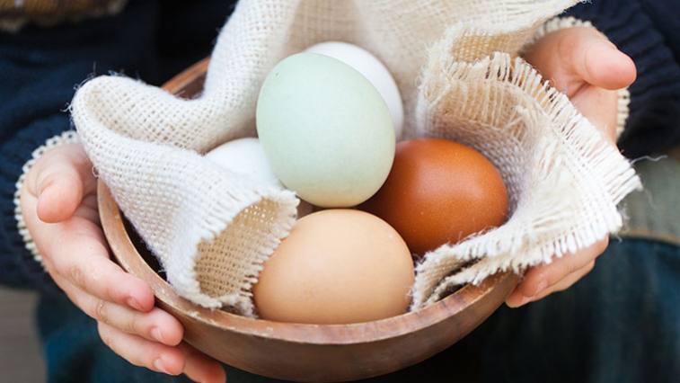 hány kerekférges tojás él milyen gyógyszer megöli a férgeket