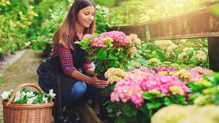 Ültessen az egész év folyamán virágzó kertet!