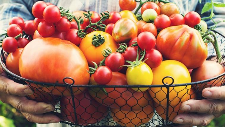 A paradicsomleves egészségesebb, mint a paradicsomlé?