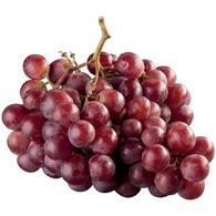 Piros szőlő